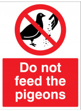 Do not feed the pigeons
